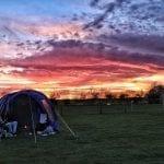 Cotswold Farm Park Gloucestershire