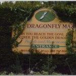 Dragonfly Maze