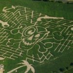 Dragonfly Maze Gloucestershire