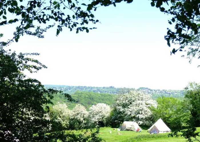Thistledown Farm Camping