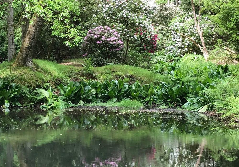 Hergest Croft Gardens Herefordshire