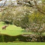 Hellens Manor Hereford