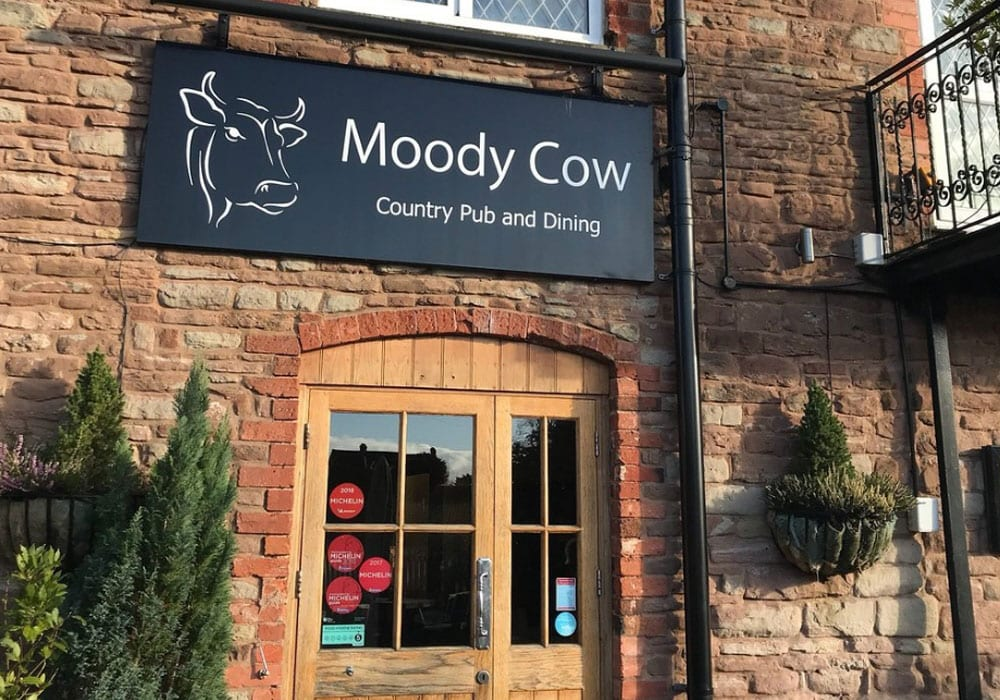 Moody Cow