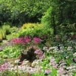Moor Meadow Gardens