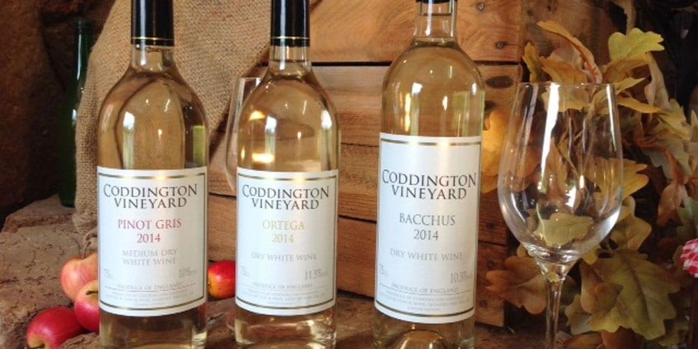Coddington Vineyard Wine Tasting