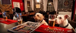 Dog Friendly Pubs