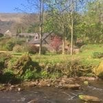 Forest Mill Holiday Cottages