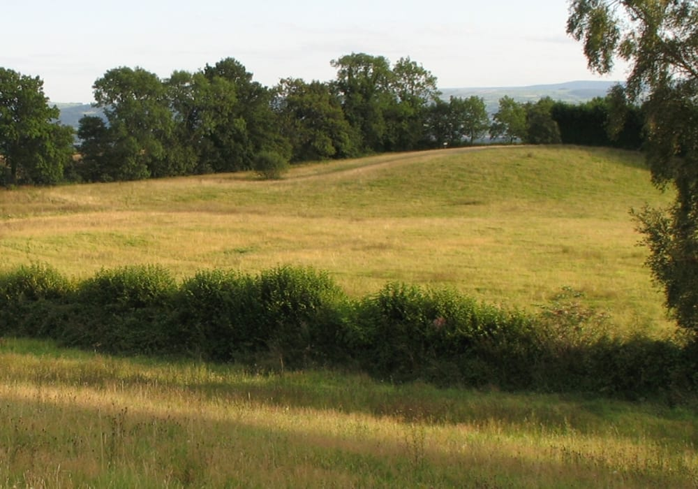 Birches Farm Picnic In Herefordshire