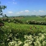 Durstone Farm Hereford