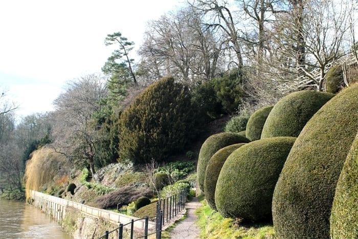 Valentines Gardens