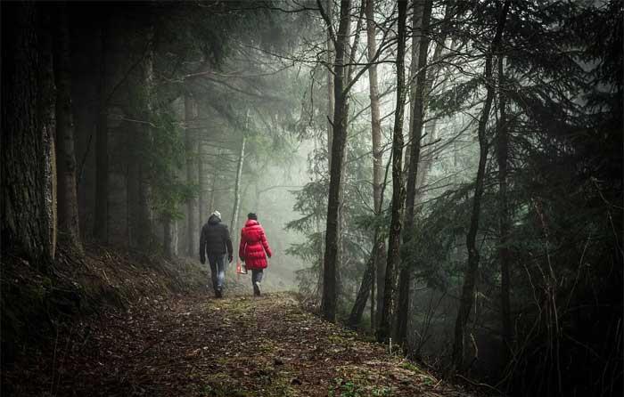 Wintery Strolls