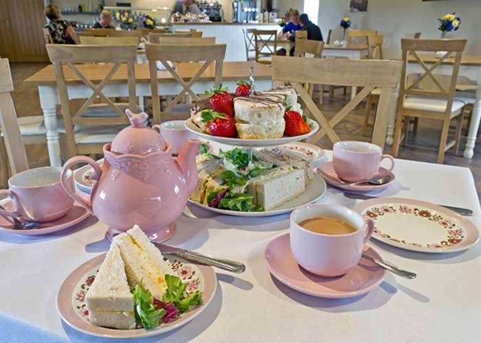 Alexander Afternoon Tea