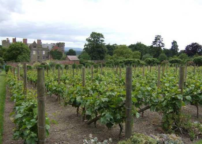 Croft Castle Gardens