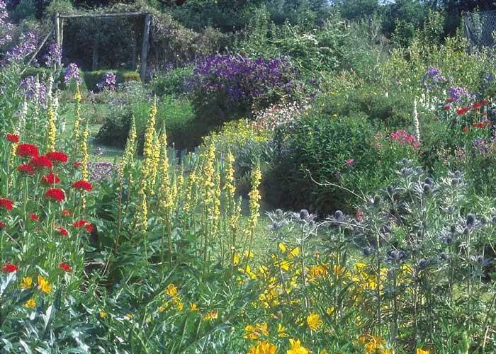 Hergest Garden