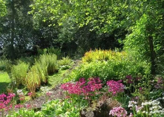 Moors Garden