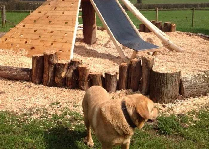 Rowlestone Dog Friendly Campsites In Herefordshire
