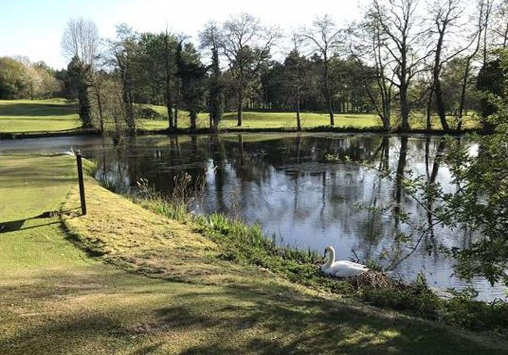 Hawkstone Park Shrewsbury