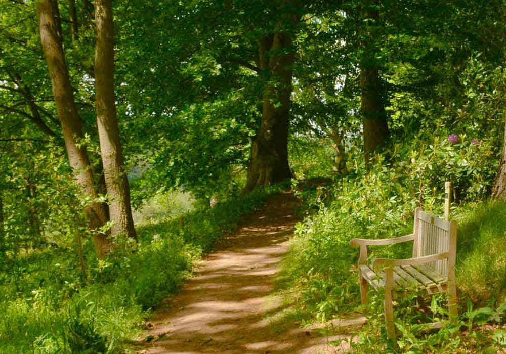 Arley Arboretum Bewdley