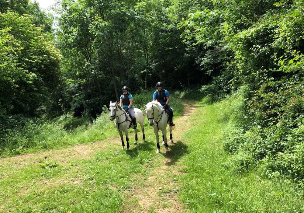 Cotswolds Riding Worcestershire