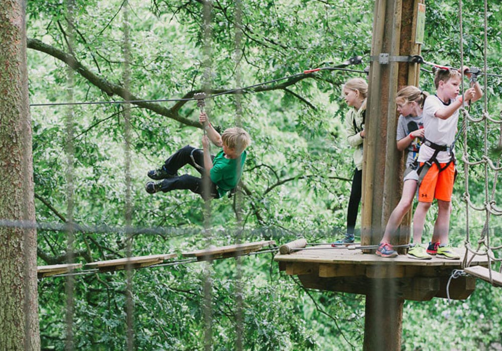 Things To Do In The Midlands, Go Ape Forest Of Dean